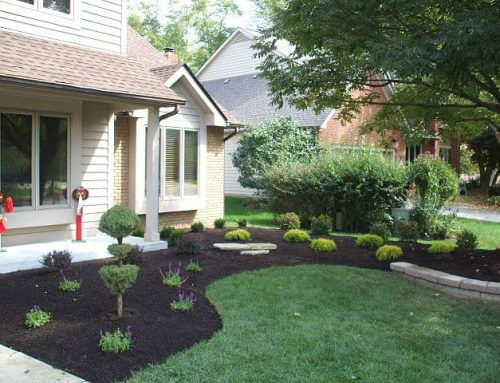 An Alberta spruce evergreen grafted into a pom pom shape focal point with perennials, retaining wall with accent limestone steppers insert