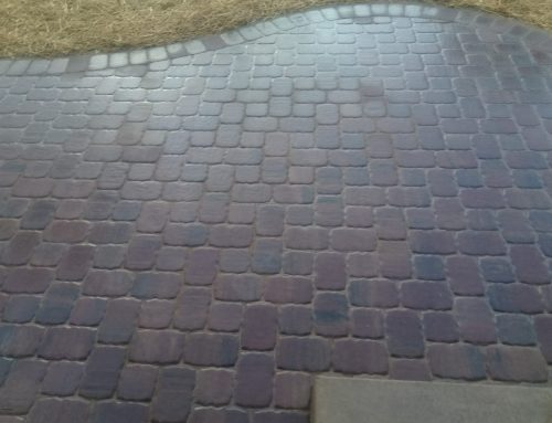 Paver patio and entryway