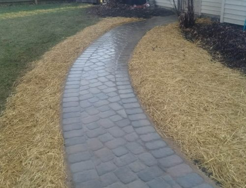 Residential paver patio walkway