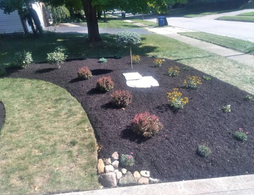 Landscape design with boulders and with limestone steppers accent